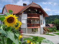 Tourist farm with apartments Antonija, Podnart