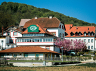 Inn and boarding house Les, Rimska cesta 31, 8250 Brežice