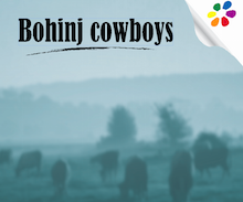 One day package - BOHINJ COWBOYS
